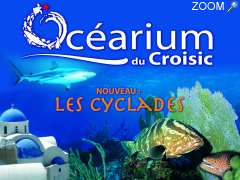 photo de OCEARIUM du Croisic
